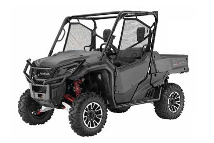 2018 Pioneer 1000 - Matte Gray Metallic