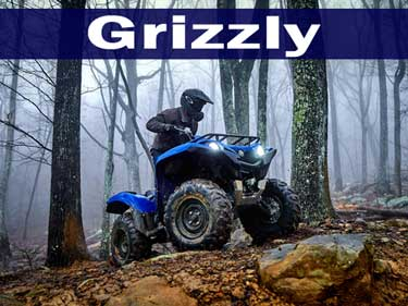 Yamaha Grizzly ATV's