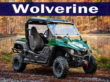 2016 Yamaha Wolverine Side by Side